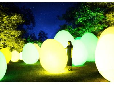 12月1日(土)から「チームラボ 森と湖の光の祭」を開催 埼玉県飯能市にオープンする「メッツァビレッジ」の宮沢湖と湖畔の森をインタラクティブな光のアート空間に。