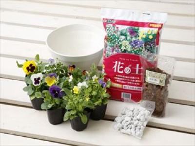 GooDayでは秋の園芸シーズンに向けて<新園芸祭>を開催します。