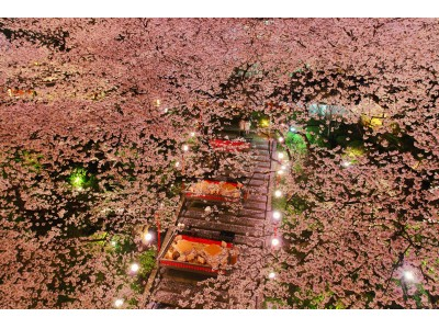 【高輪エリアのプリンスホテル】京都市の展開する「京都館プロジェクト2020」と初コラボレーション 桜とともに日本文化を伝承する「高輪 桜まつり2019」を開催