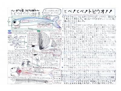 第35回「海とさかな自由研究・作品コンクール」受賞作決まる