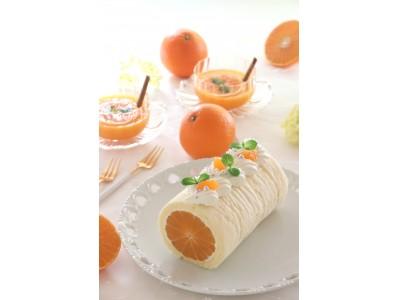 「東京ガス料理教室」×「愛媛県西条市」コラボ企画 まるごとみかんのロールケーキを作ろう!