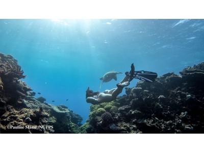 夢が現実になる旅をプレゼント!「夢が叶う島・ニューカレドニア」キャンペーン開催中