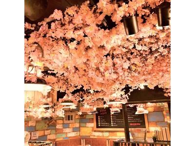 桜満開!!快適花見!!コロナ禍でも桜を見ながら飲める!話題の『エア花見』開催中!!