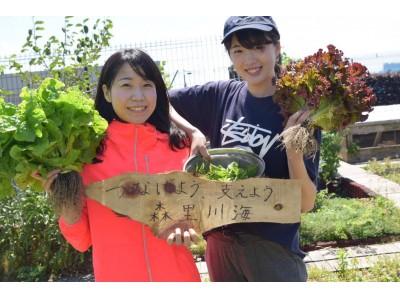 """地域の魅力をアピールする""""Natural & Organicフェス""""がお台場で開催!"""
