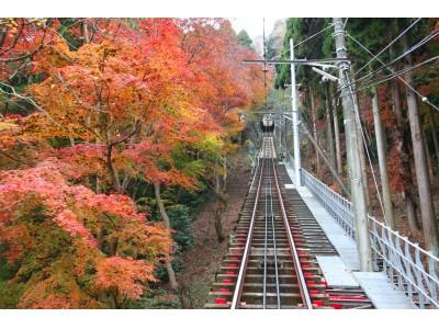高尾山エリアの秋の行楽シーズンにあわせ「高尾山オータムフェスタ2017」を開催します!