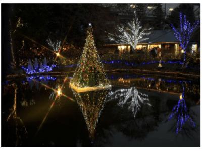 京王フローラルガーデン アンジェにて「アンジェのクリスマス」を開催!