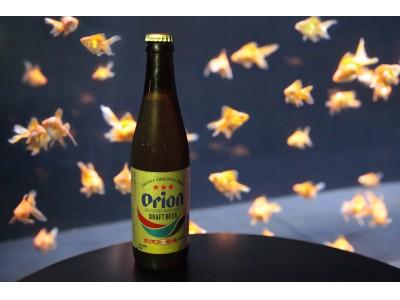 8月3日(金)限定!「世界ビールデー」に生ビールを100円でご提供!「世界の金魚ビアホール・特別デー」を開催