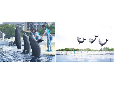 【京都水族館】イルカとトレーナーの友情を届ける新しいパフォーマンス 「YEAH!!」 2020年7月16日(木)スタート
