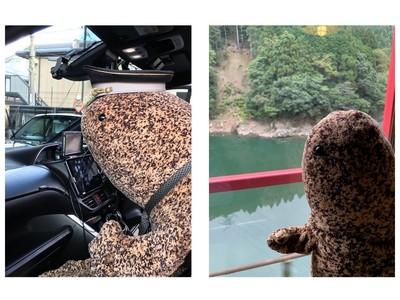 【京都水族館】1.7メートルの超特大オオサンショウウオ(ぬいぐるみ)が乗車する「オオサンタクシー」「オオサントロッコ列車」が走行