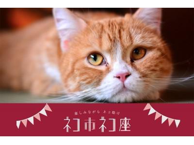 猫好きも半端ないって!ネコのバスやネコテントも登場!参加者全員が「猫助け」の想いで1つに繋がる最大級ホゴネコイベント!楽しみながら猫助け「ネコ市ネコ座」7月14~16日東京ドームシティで開催。