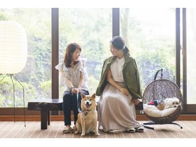 ペットと泊まれるホテル、人気の伊豆高原エリアに2施設目  「ペット&スパホテル伊豆ワン」 7/16グランドオープン