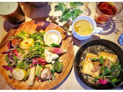 【東京・銀座】「ギンザ オリーバル」で低糖質を意識した「スーパーフードサラダランチ」が登場!キアヌ・チアシード・ゴジベリーをふんだんに使ったサラダと豆腐ステーキのランチが6/6よりスタートします!