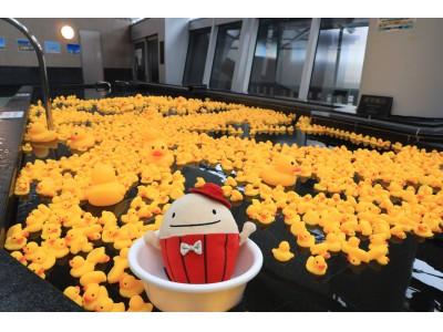 中部国際空港 展望風呂風(フー)の湯に「ラベンダー×2000匹のあひる風呂」