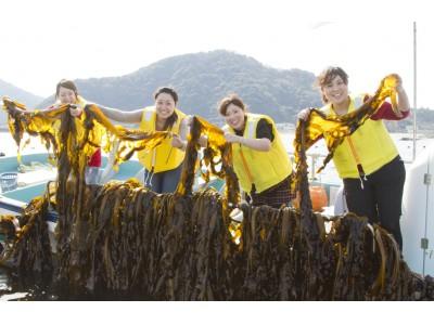 【徳島県・ルネッサンス リゾート ナルト】春のシェア旅「#ルネッサンス鳴門わかめ収穫体験」♪ 船に乗ってワカメ漁へ!刈り取り~塩蔵、しゃぶしゃぶ試食まで