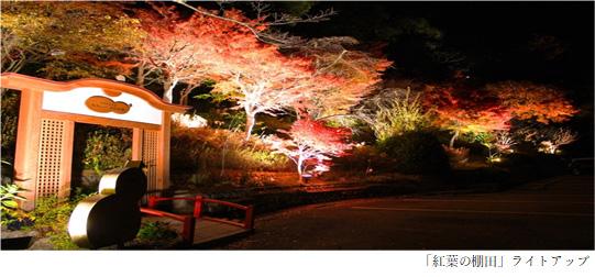 有馬唯一の紅葉ライトアップを「太閤の湯」園内「紅葉(こうよう)の棚田(たなだ)」で開催 GOTO有馬ナイトイベント!「写メってお得に太閤の湯キャンペーン」開催 2020年11月1日(日)から