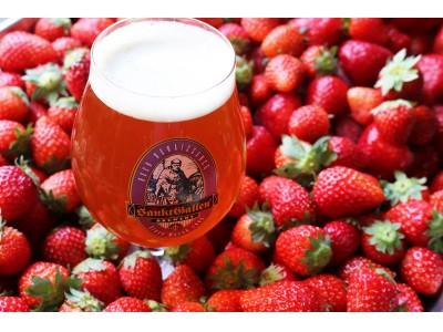 サンクトガーレン、いちごジャムのような甘い香りとミルキーな飲み口のビール「ストロベリーミルクシェイクIPA」5月29日より限定発売