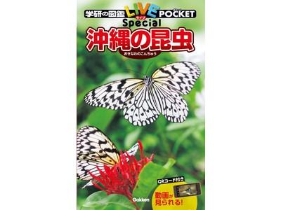 【昆虫を瞬時に見分けるコツが満載】いまにも動き出しそうな白バック写真が美しい! 夏休みの冒険心をくすぐる最新図鑑『沖縄の昆虫』発売!
