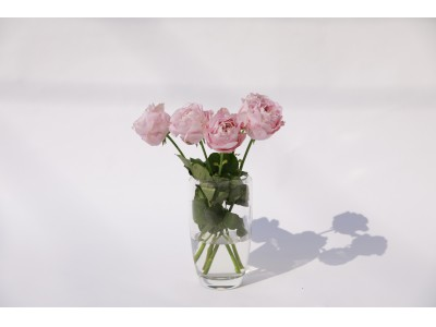 新型コロナウィルス感染症の影響により出荷できず廃棄されてしまう花を少しでも救いたい。今、会えない大切な人に、そして自分に花を贈ろう