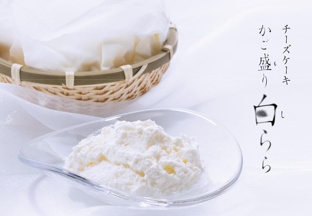 19年間愛され続ける幻のチーズケーキが大阪に再び登場【銀のぶどう】