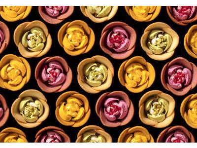 """可愛すぎる""""ショコラの花園""""TOKYOチューリップローズ、バレンタイン限定オンラインショップOPEN"""