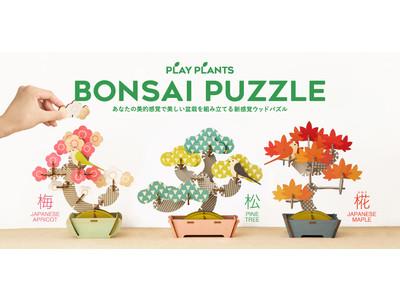 組み合わせ無限大のパズル!?あなたの「美的センス」を形にする新感覚のウッドパズル『BONSAI PUZZLE(ボンサイ パズル)』発売決定!