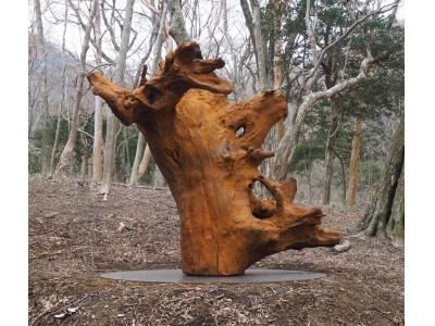 現代美術家アイ・ウェイウェイの彫刻作品を新収蔵 国立公園内、森の遊歩道にて公開