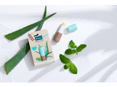 天然植物オイルが唇の角層に素早く浸透 マスクの中の唇もしっとりふっくらマットな仕上がり クナイプ オーガニック リップバームスペアミントの香り