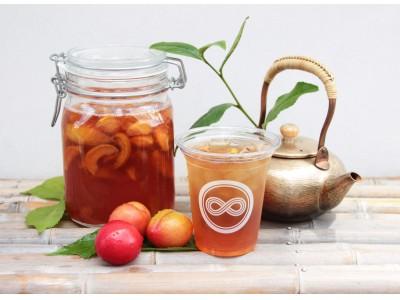 """旬の果実と日本茶の新たな味わい『季節のくだもの茶』シリーズ第3弾!""""すもも""""の自家製シロップ × ほうじ茶"""