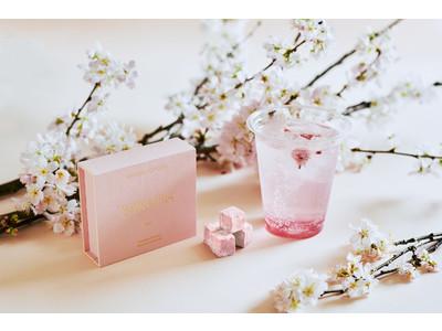 お店にいながらお花見体験!四季折々の文化と情緒を味わうチョコレート【四季とメゾン】がスタート。第一弾は3/26(金)より桜スイーツが登場。