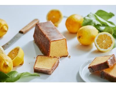 初夏にぴったり!カカオのフルーツビネガーを使用した他にはない果実感のレモンケーキを5/15(土)から販売