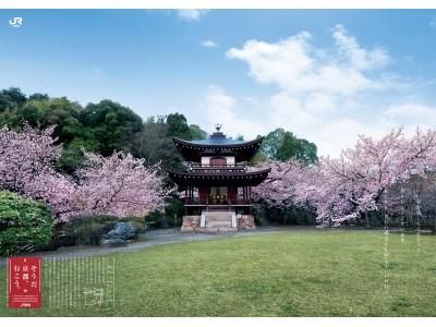 「そうだ 京都、行こう。」桜編 今年の舞台は知る人ぞ知る桜の名所・勧修寺!