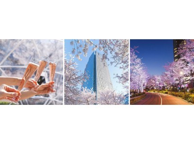 華やかに咲く約150本の桜を都会的に楽しむ「MIDTOWN BLOSSOM 2019」開催
