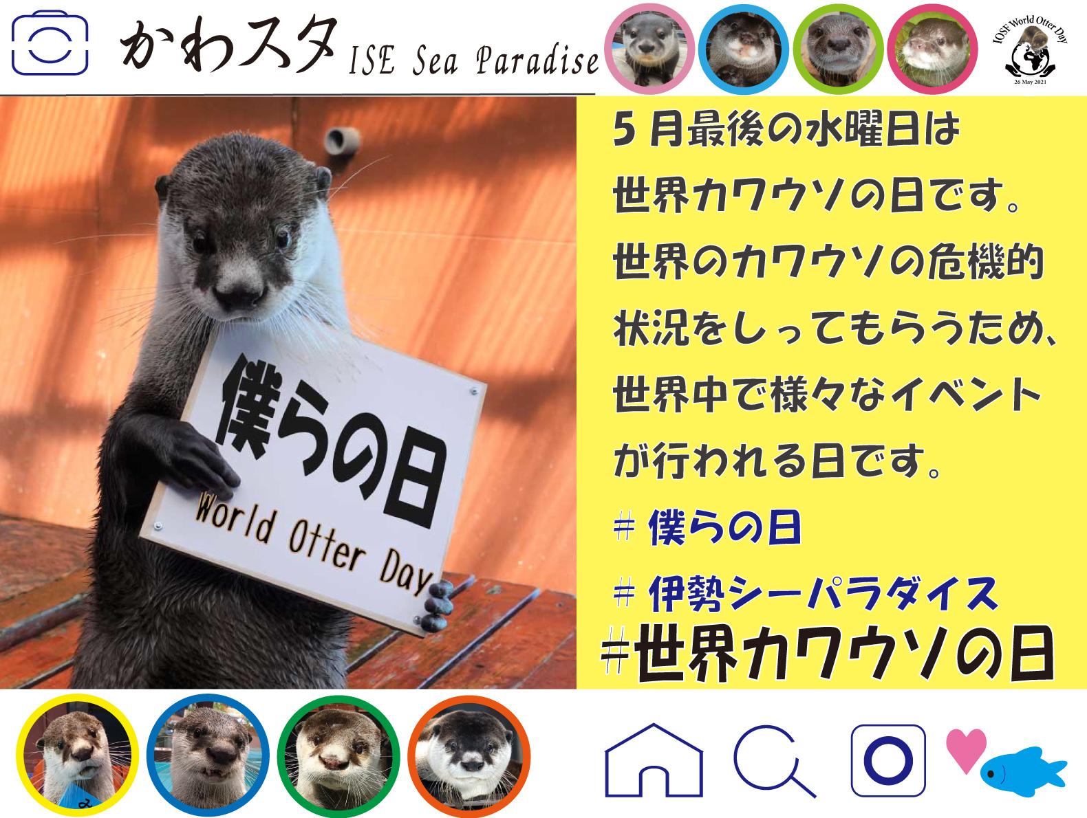 【令和3年5月26日(水)はWorld Otter Day!!】お家でも楽しめるWorld Otte... 画像