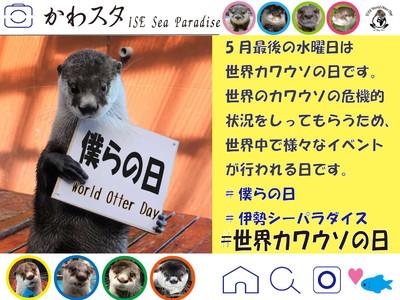 【令和3年5月26日(水)はWorld Otter Day!!】お家でも楽しめるWorld Otter Day(世界カワウソの日)を実施します。