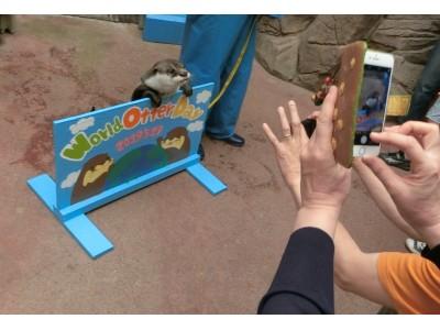 【令和元年5月29日(水)】伊勢シーパラダイス World Otter Day(世界カワウソの日)特別イベント「きらりの1人でできるもんWorld Otter Dayお散歩チャレンジ」のお知らせ