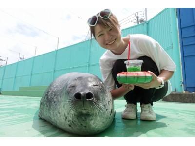 ~日本一の人気モノたちに会える水族館~「伊勢シーパラダイスふれあいフェス2019」開催中!!
