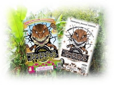 恐竜王国・福井が生んだ特許原料フルクタン使用の恐竜フェイスパックが第9回福井県観光土産品に選定!