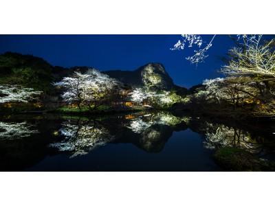 【佐賀県武雄市】たけお春旅2019~桜の名所編~