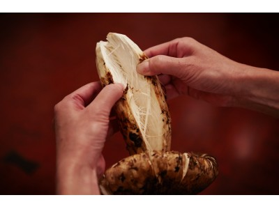 銀座唯一の松茸料理専門店『松茸屋 銀座 魚松』が10月10日(火)から松茸と近江牛をふんだんに使用した贅沢すぎるランチを提供開始!