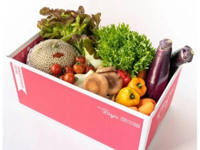 ふるさと納税返礼品に希少な国産生ライチ入りの定期便登場。野菜ソムリエプロが厳選、経済活動の活性化で持続可能な農業の実現へ