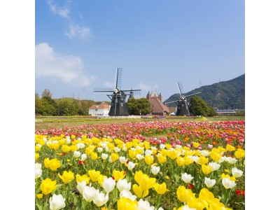 オランダ発ダイヤモンドジュエラー「ROYAL ASSCHER」福岡天神店にて、春のブライダルフェア「BLOEM FAIR」を開催中。