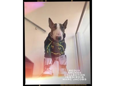 マーク ジェイコブス、『REDUX GRUNGE COLLECTION 1993/2018 MARC JACOBS』の復刻を記念した、Kodak × Marc Jacobsのカメラアプリを発表!