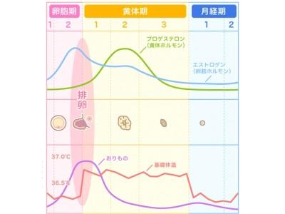 『ルナルナ』に蓄積されたビッグデータを解析し、より高精度な排卵日予測を実現