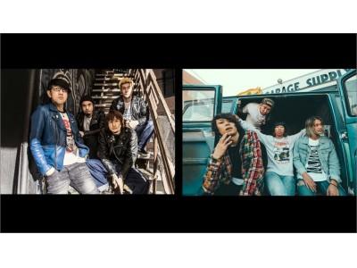 『music.jp』が専門チャンネル見放題の「テレビコース」をスタート