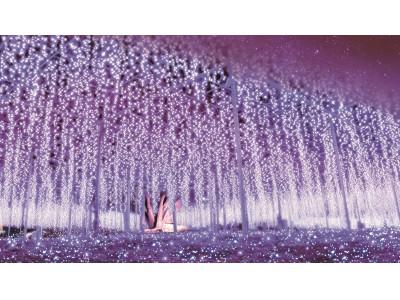 台風による園内全域の冠水被害を乗り越えた、あしかがフラワーパークのイルミネーションイベント『Flower Fantasy~光の花の庭2019~』が2019年11月2日(土)より開催!