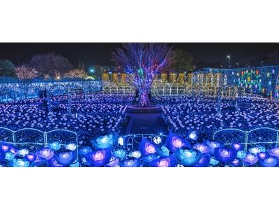 日本三大イルミネーション認定のあしかがフラワーパーク『光の花の庭~Flower Fantasy2020~』が2020年10月17日(土)より開催!