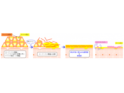 DHC「プラチナシルバー ベースメークシリーズ」誕生!
