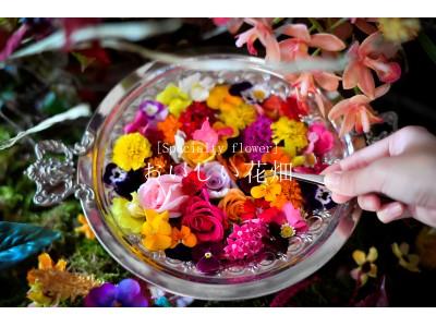 食べられる花屋 EDIBLE GARDEN presents 「おいしい花畑」 レストランがエディブルフラワーで彩られる体験型アートイベントを期間限定で初開催