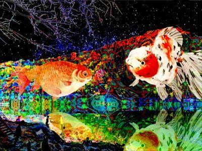 風光明媚な京都嵐山の夜空に金魚が泳ぐ!!「空飛ぶ金魚on京都・嵐山花灯路」
