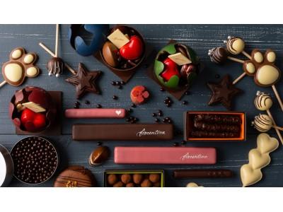 上質なショコラやストロベリーづくしのディナーとともに過ごすバレンタイン! ~ グランド ハイアット 東京 2019 Winter ~